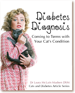 Cats and Diabetes Article Cover - Diabetes Diagnosis - Coming to Terms with Your Cats Condition