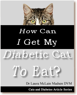 Cats and Diabetes Article Cover - How Can I Get My Diabetic Cat to Eat