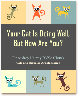 Cats and Diabetes Article Cover - Your Cat Is Doing Well But How Are You