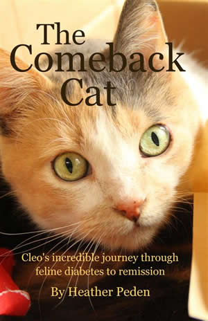 Photo of the cover of the book 'The Comeback Cat'